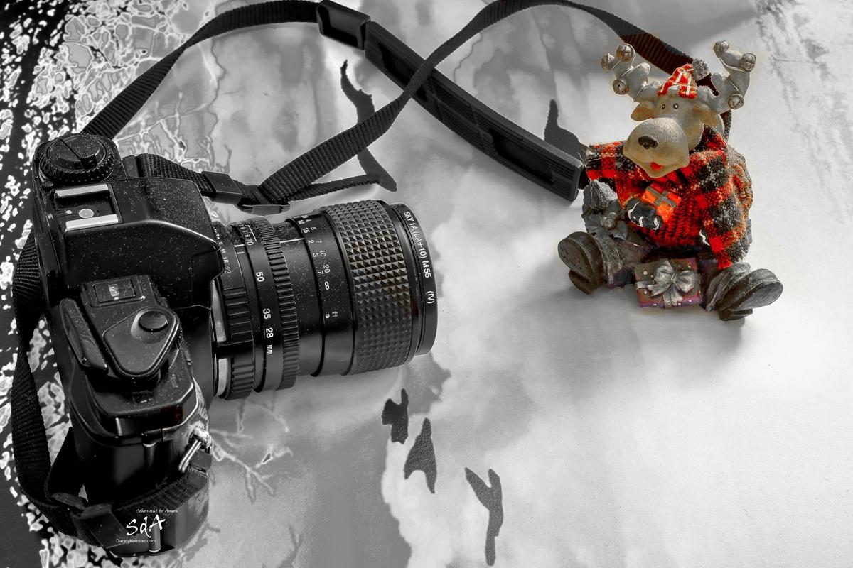 Weihnachtsprotrait eins Hirsches mit Kamera im Vordergrund., Hoho es weihnachtet schon sehr, Sda, Sehnsucht der Augem Danny Koerber, Weihnachten, Portrait, Homepage