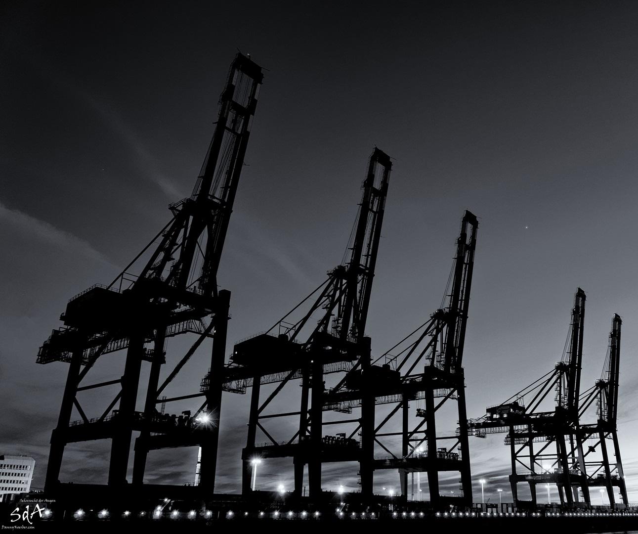 Stille Giganten im Hamburger Hafen. Hamburger Hafen fotografiert von Danny Koerber für Sehnsucht der Augen.