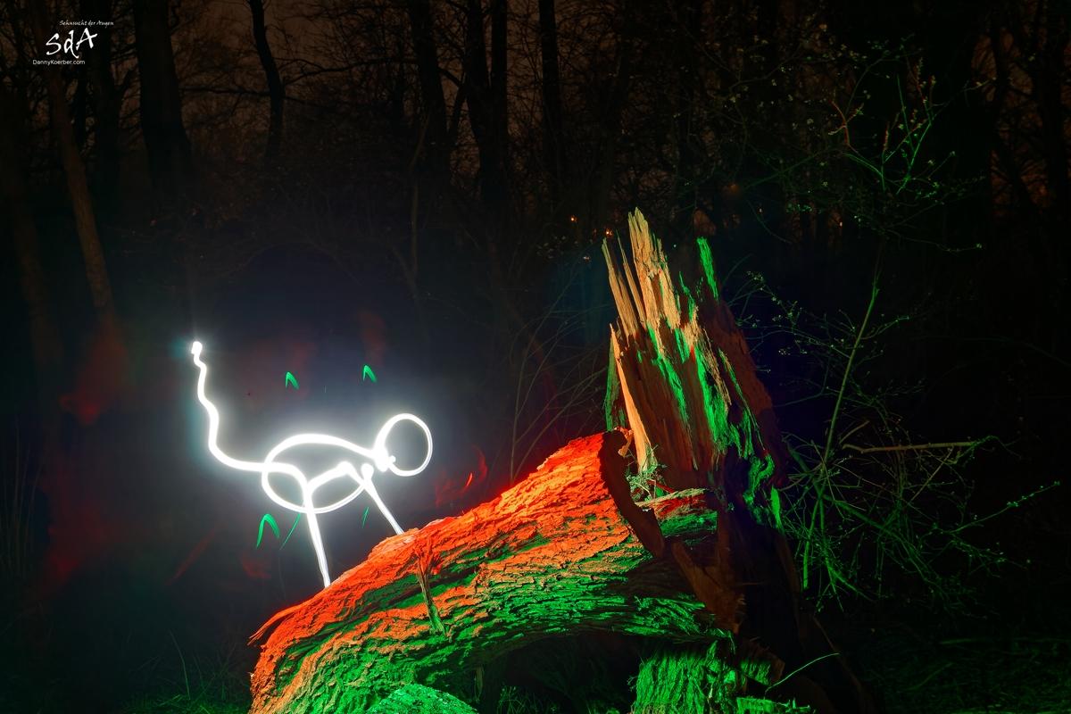 Allein im dunklen Wald, LIghtpainting von Danny Koerber fotografiert in Hamburg Altenwerder.