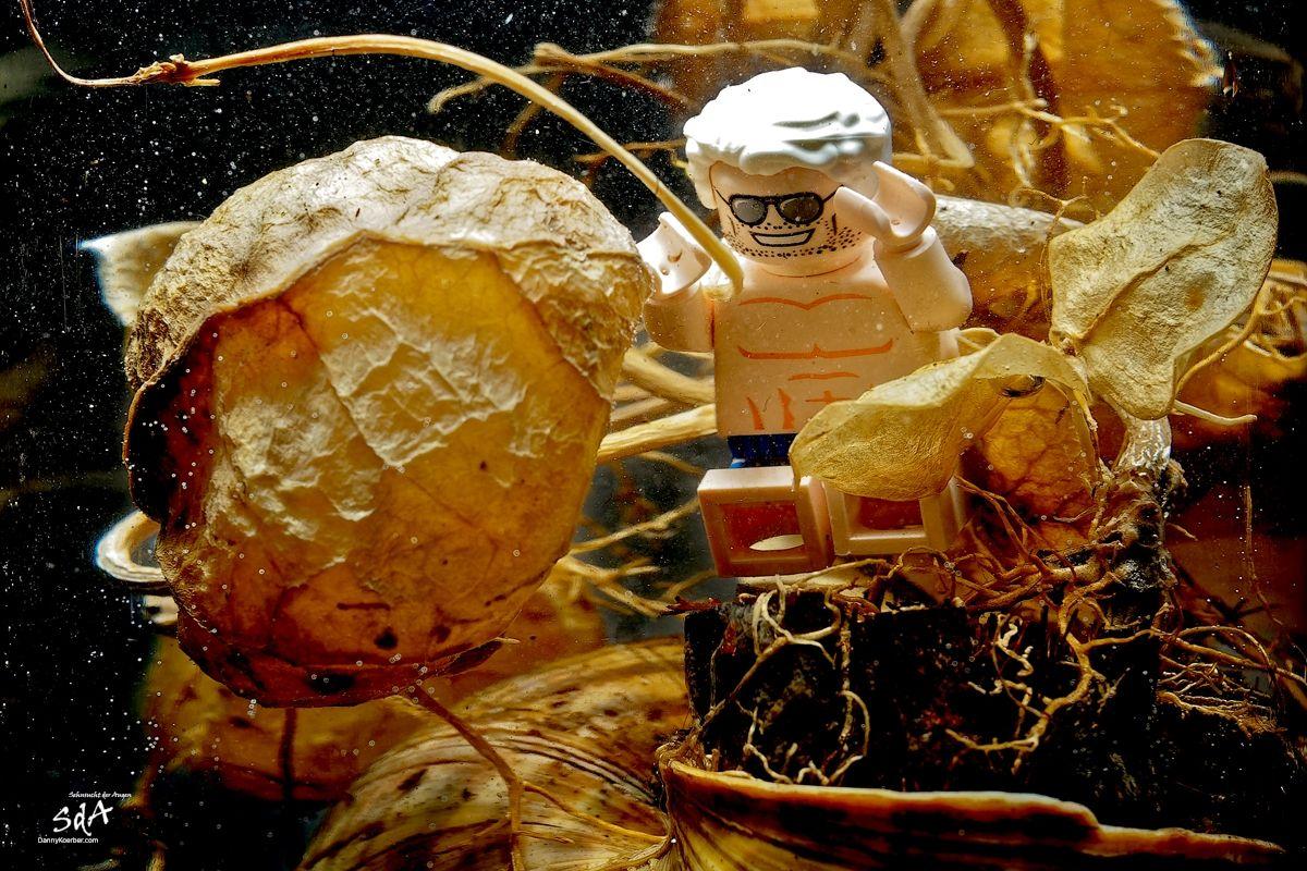 Ein guten Wochenstart und geht mal wieder baden, Auftauchgang, eine Legofigur fotografiert von Danny Koerber für Sehnsucht der Augen.
