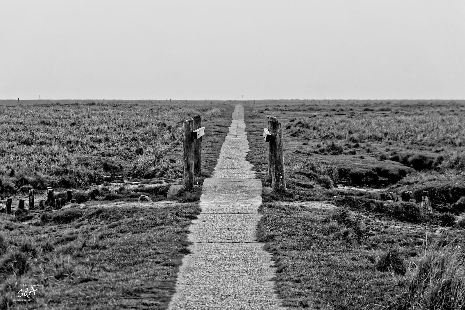 Der lange Weg, Schwarz Weiß Fotografie von Danny Koerber.