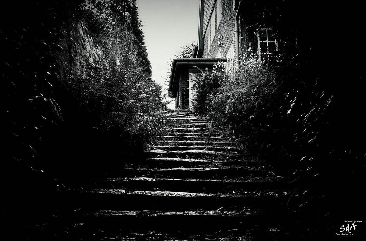 Hamburger-Blankenese-Treppenviertel-Der-Weg-ins-Licht, Architektur fotografiert von Danny Koerber für Sehnsucht der Augen.