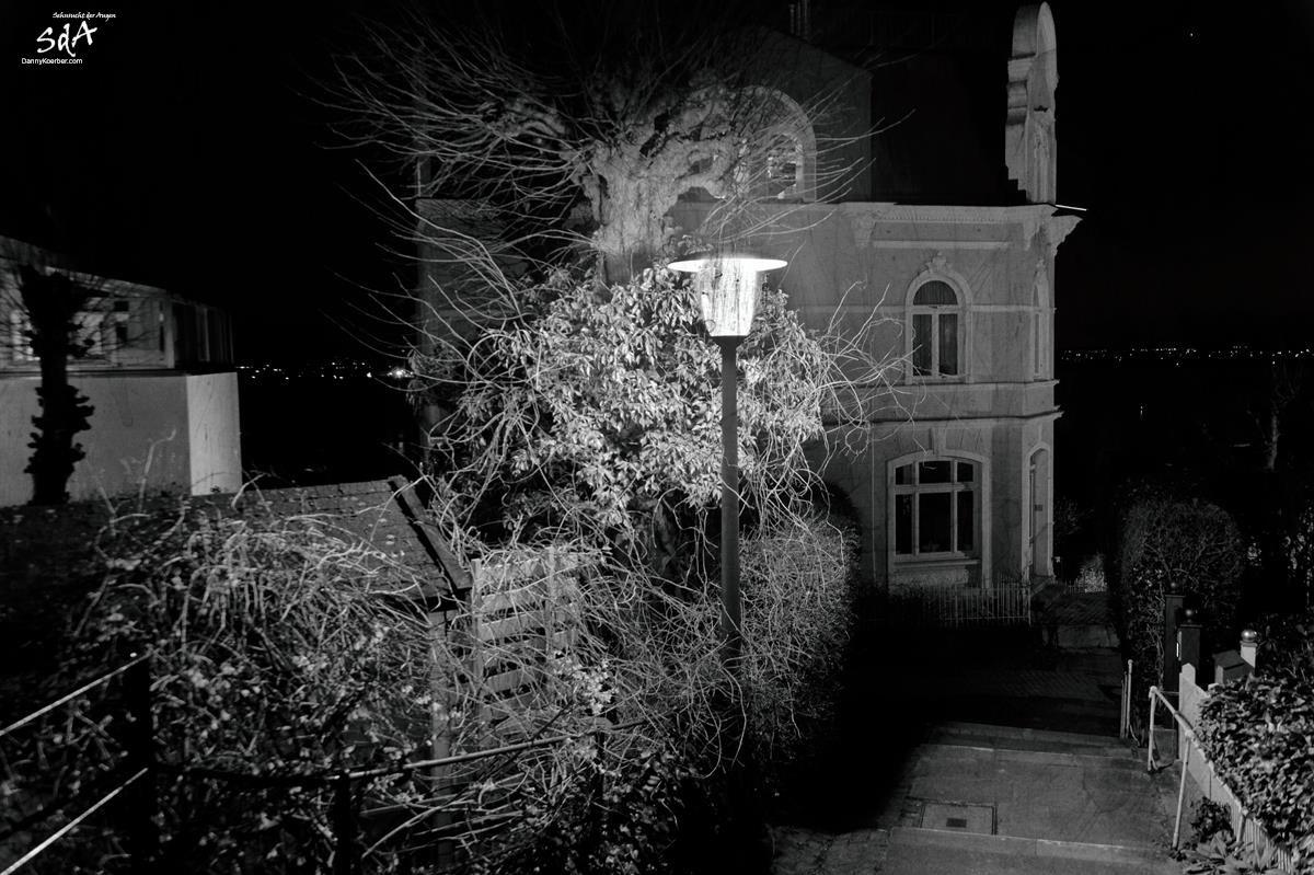 Hamburger-Blankenese-Treppenviertel-Steiler-Weg, Architektur fotografiert von Danny Koerber für Sehnsucht der Augen.